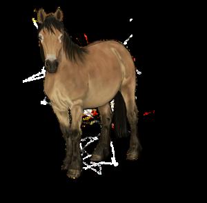 Pferdemotiv für Kinder